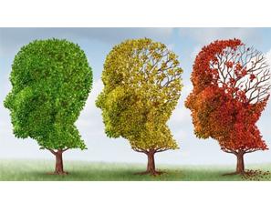 La esquizofrenia es la dependencia de vitamina B3